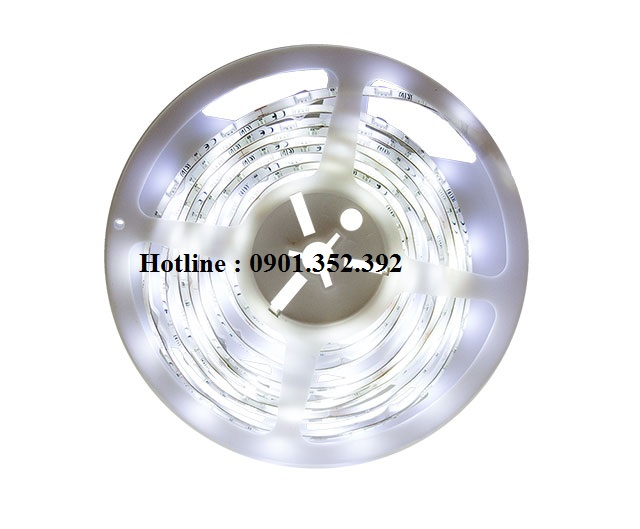Led dây Meanwell NCL-CL1-01